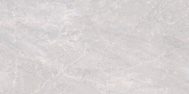 TRENTO GRIS 60X120 (LAPPATO RECTIFIED PORCELAIN)